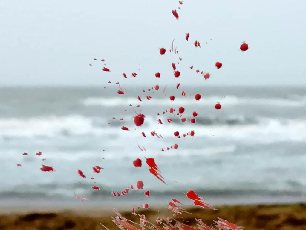 10_la-musica-del-mar