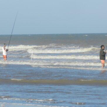 Cuatro hermanos y el arte de la pesca